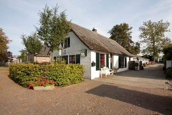 Houten Vloeren Roermond : Houten vloeren houten vloeren video overzicht houtenvloeren tv
